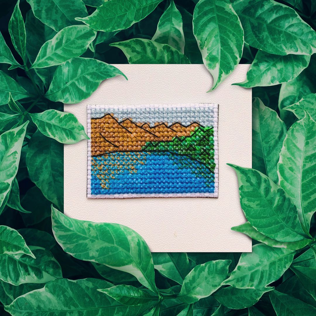 What is full coverage cross stitch? Short and easy. Embroidery dictionary.